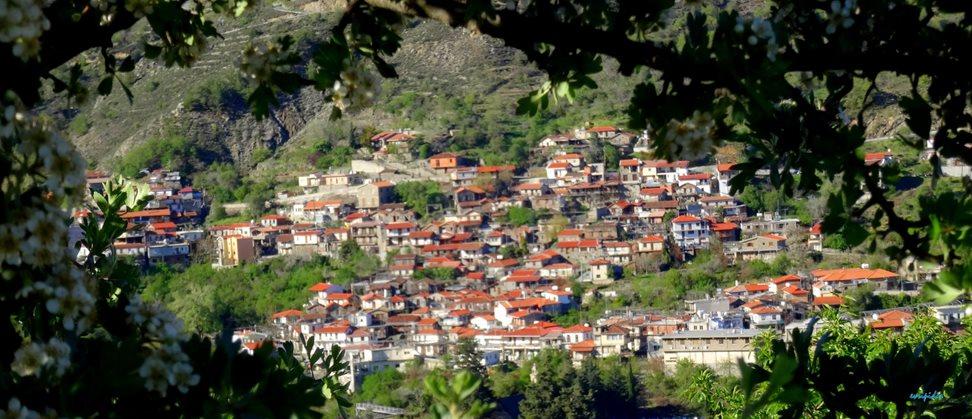 alona_-cyprus-_-village.jpg